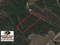 Reduced, 10 Acres of Residential : Macon : Warren County : North Carolina