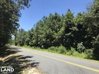 Ridgeland Sardis Rd 10 Ac. Parcel : Ridgeland : Jasper County : South Carolina