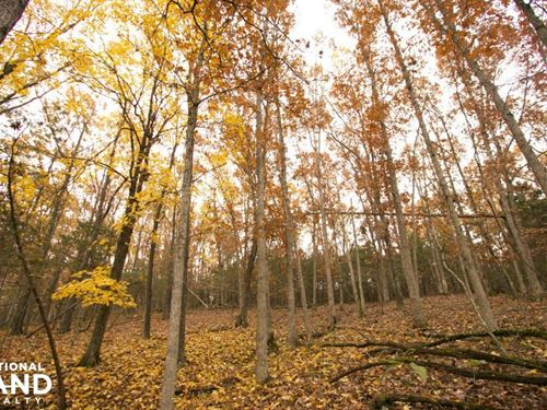 Nubbin Ridge Hunting And Homesite : Bland : Gasconade County : Missouri