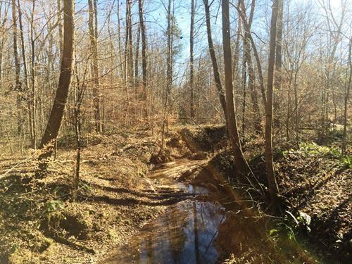 Hood Tract : Clarksburg : Carroll County : Tennessee