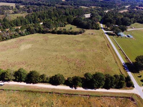 Gorgeous Pasture Land : Madison : Morgan County : Georgia