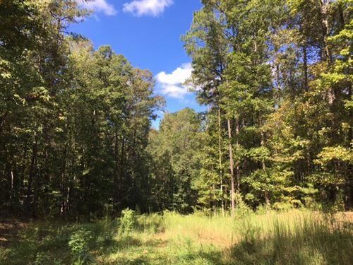 Walton County Wooded Tract : Good Hope : Walton County : Georgia