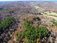 Railroad Grade Tract : Paris : Benton County : Tennessee