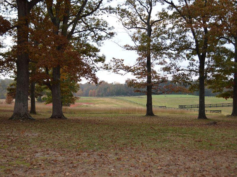 51+/- Acres Spartanburg District 2 : Chesnee : Spartanburg County : South Carolina