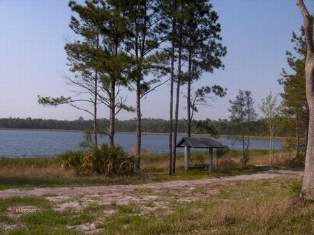 14 Acres On Lake Goodson Wll-032 : Melrose : Putnam County : Florida