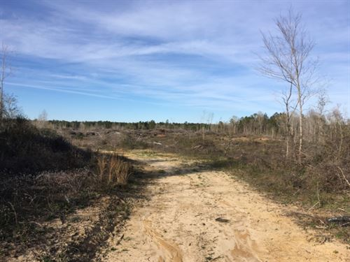 80+/- Acres : Columbia : Marion County : Mississippi