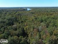 Near Coffeeville Hunting, Fishing : Coffeeville : Clarke County : Alabama