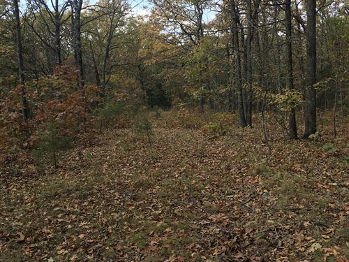 40 Acres Cordell Rd Miller County : Eldon : Miller County : Missouri