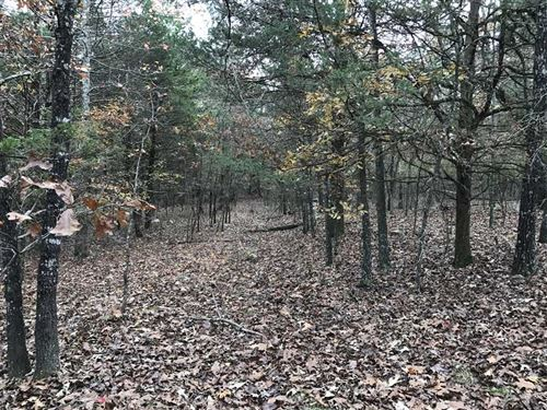62.35 Timbered Acreage : Cave City : Independence County : Arkansas