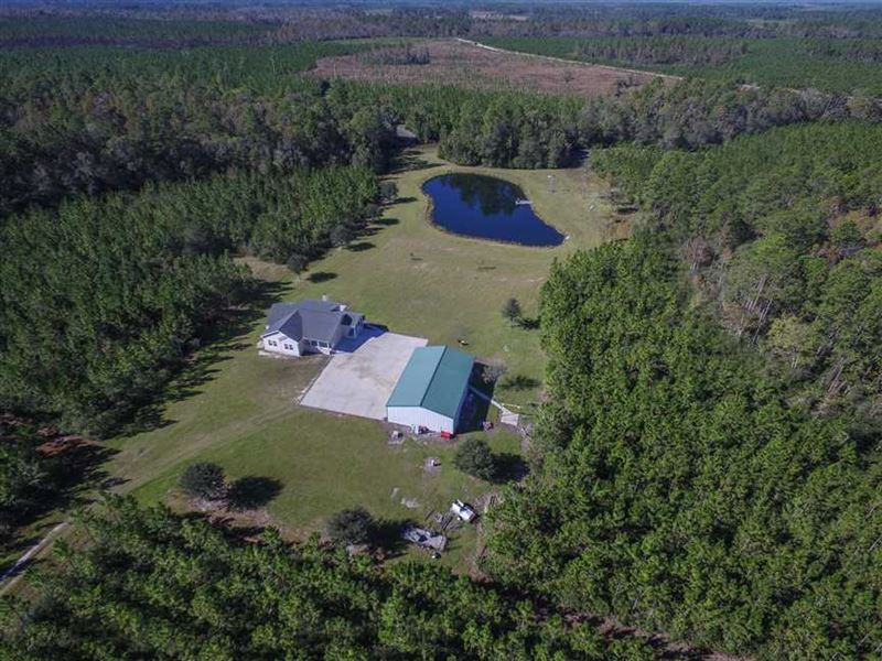 Hunting Land For Sale in Georgia 4 : Fargo : Clinch County : Georgia