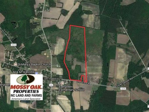 Reduced, 70 Acres of Farm And Hun : Evergreen : Columbus County : North Carolina