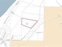 Over 54 Acres Of Semi Remote Hunti : Nikiski : Kenai Peninsula Borough : Alaska