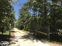 Ridgeland Sardis Road 44 Ac. Estate : Ridgeland : Jasper County : South Carolina
