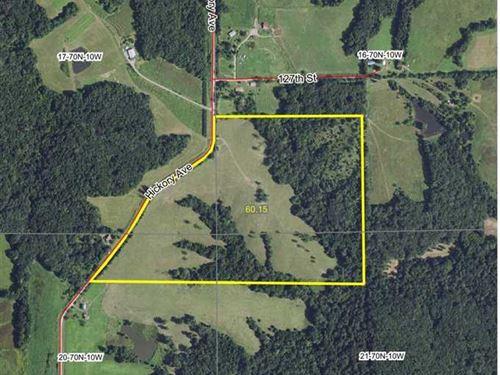 60 Acres, M/L Recreational Land fo : Birmingham : Van Buren County : Iowa