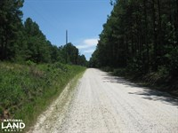 Gum Springs Court Homesite Lot 7 : Winnsboro : Fairfield County : South Carolina