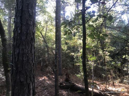 15 Ac - Wooded Tract Adjoining Kisa : Winnfield : Winn Parish : Louisiana