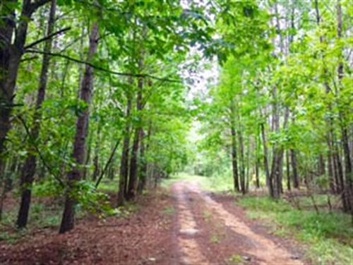 271 Acres On Poplar Hill Rd : Fayette : Jefferson County : Mississippi