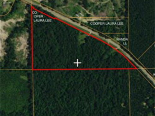77.83 Acres Oxford/Meadville Road : Gloster : Amite County : Mississippi