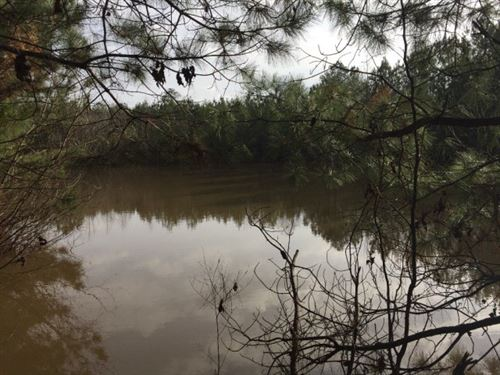 Hunting Camp With Nice Lake : Liberty : Amite County : Mississippi