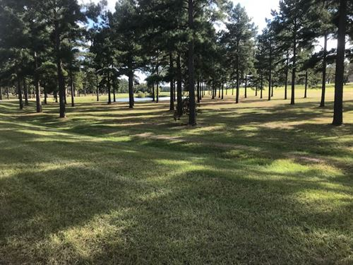 Luxurious Lot With Pond And Acreage : Perry : Peach County : Georgia