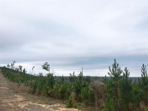 Pike Woodlands North : Troy : Pike County : Alabama
