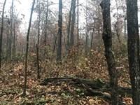 Spencer County Hunter's Paradise : Chrisney : Spencer County : Indiana