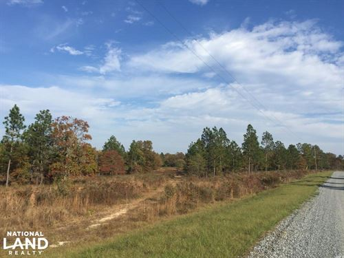 Hound Hollow Streamside Estate : Camden : Kershaw County : South Carolina