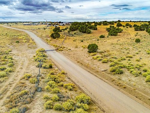 Ranch Has Utilities & Road Frontage : Fence Lake : Cibola County : New Mexico