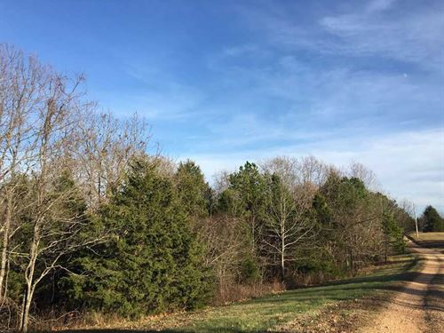 22 Acres in The Heart of The : Forsyth : Taney County : Missouri