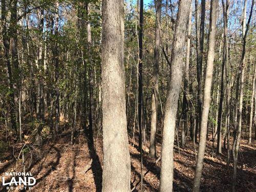 Pleasant Hill Road Hunting And Timb : Gattman : Monroe County : Mississippi