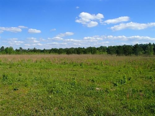 100 Acres In Oktibbeha County : Starkville : Oktibbeha County : Mississippi