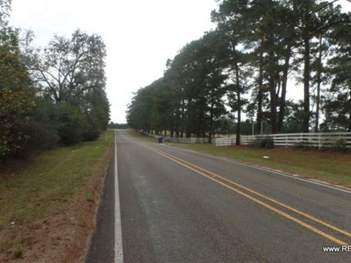 20 Ac, Wooded Tract For Rural Home : Jasper : Texas