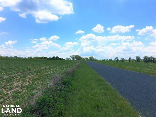 Four Points Mini Farm : Wagener : Aiken County : South Carolina