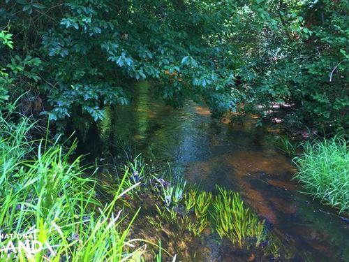 Dean Swamp Creek Recreational Tract : Wagener : Aiken County : South Carolina