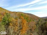 Buffalo Cove Tract : Lenoir : Caldwell County : North Carolina