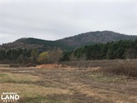 516 Acres Timberland Adjacent to : Caddo Gap : Montgomery County : Arkansas