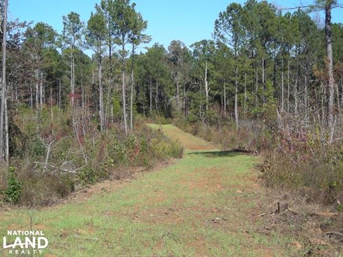 GA Hwy 100 Timber Tract 323 Acres : Franklin : Heard County : Georgia