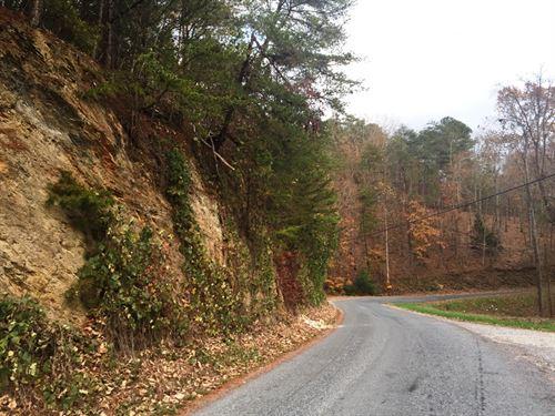 Marlowe Branch Tract Ne : Ranger : Gordon County : Georgia