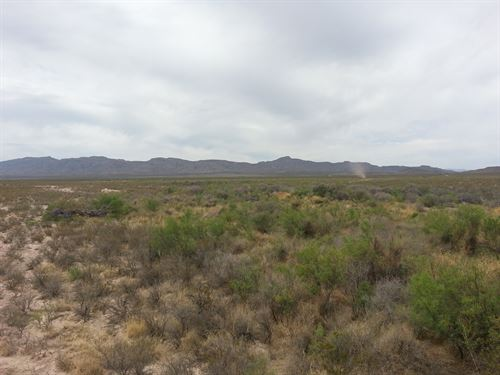 160 Acres Rec, Property, $395/Ac : Fabens : Hudspeth County : Texas
