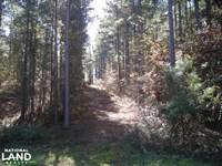 NW Polk Co, Timber Tract 36 Acres : Cedartown : Polk County : Georgia