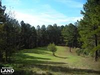 James Wood Rd Timber Tract 80.75 : Buchanan : Haralson County : Georgia