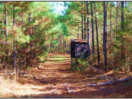 52 Acres In Attala County : Kosciusko : Attala County : Mississippi