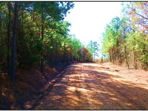 25 Acres In Attala County : Kosciusko : Attala County : Mississippi