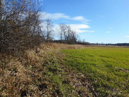 Grand Buildable Parcel With Hunting : West Bend : Washington County : Wisconsin
