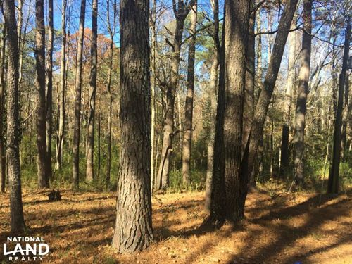 Red Bay Timber Investment & Home Si : Red Bay : Franklin County : Alabama