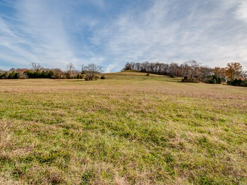 46 Gently Rolling Acres : Santa Fe : Maury County : Tennessee