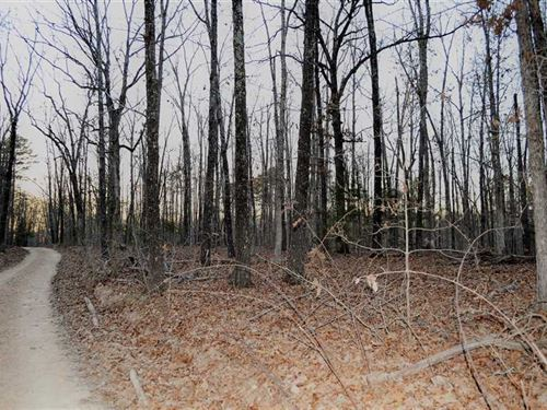 40 Acres of Residential, Recre : Yellville : Marion County : Arkansas