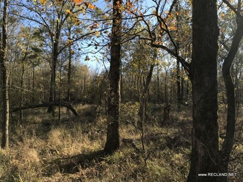 476 Ac - Large Home Site & Recr : Start : Richland Parish : Louisiana