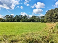 Acreage With Lakes For Sale East Ba : Zachary : East Baton Rouge Parish : Louisiana