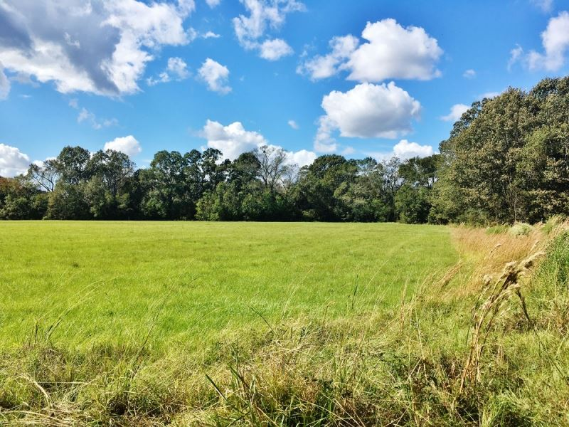 Acreage With Lakes For Sale East Ba : Zachary : East Baton Rouge Parish : Louisiana